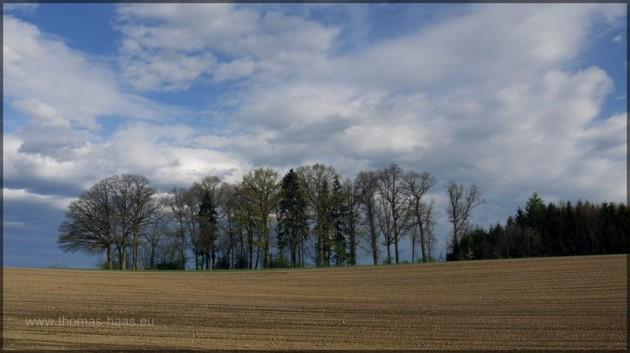 Ein geeggtes Feld im Frühling