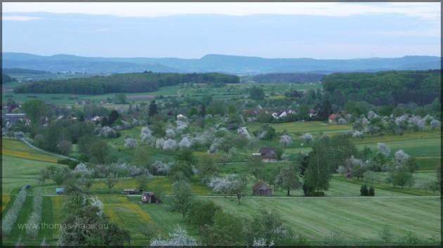 Luftbild blühender Landschaften.