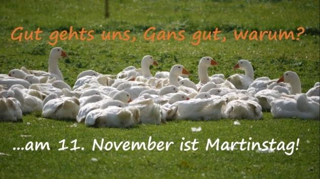 Brauch zu St. Martin - Gaensebraten...