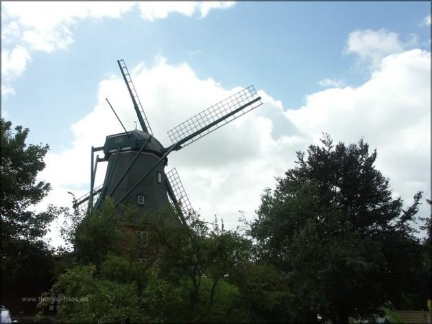 Mühle Fortuna, Meldorf