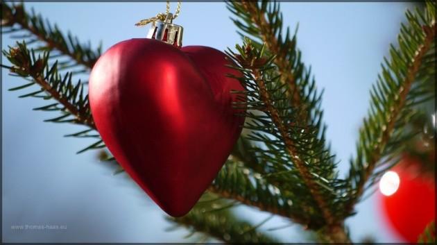 Weihnachtsbaum am Dreikönigstag 2013