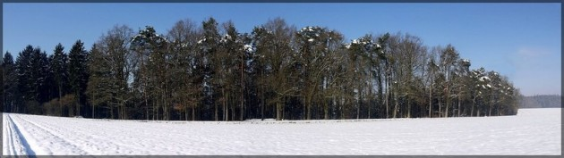 Hochebene, Bellenberg, Winter 2013, Panorama