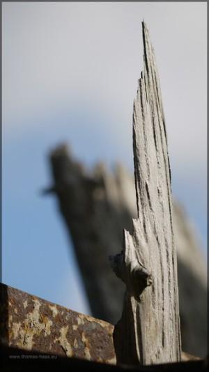 Holzreste ragen in den Himmel, Mai 2013