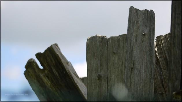 Altes Holz des Mühlrads, Mai 2013