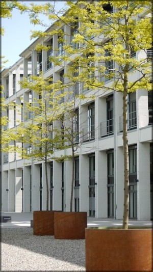 Stadtregal, Baumgruppe