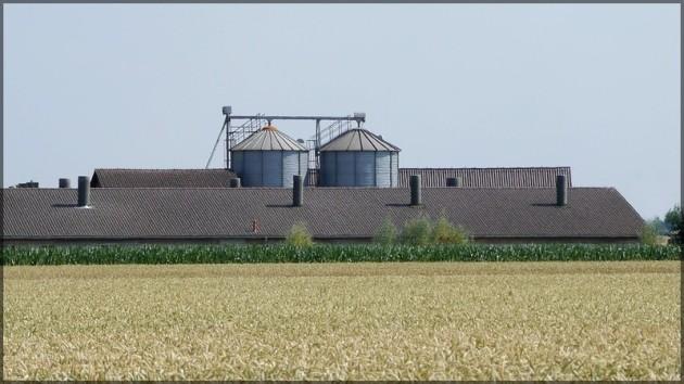 Aussiedlerhof zwischen Feldern, Juli 2013