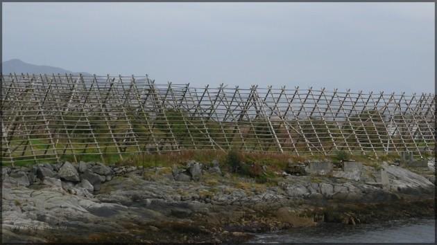 Holzgestelle zur Fischverarbeitung