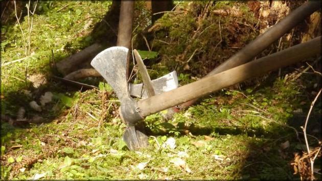 Hacke im Waldboden