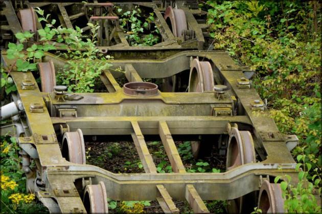 Fahrgestelle, von Grünzeug überwuchert, Juni 2014
