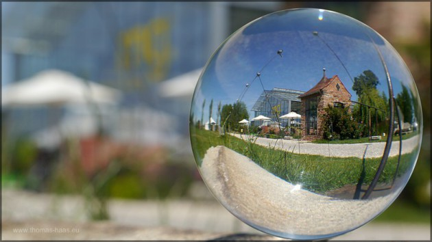 Einsatz der Glaskugel, Museum der Gartenkultur, Juli 2014
