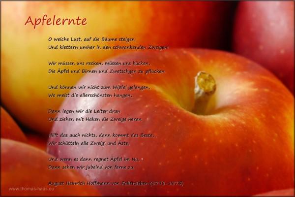 """Bild mit Gedicht """"Apfelernte"""", Hoffmann von Fallersleben"""