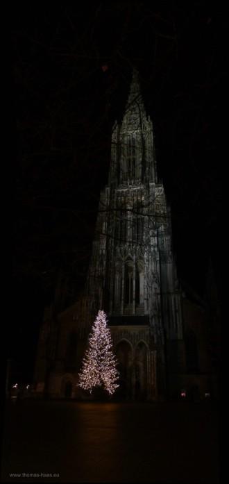 Weihnachtsbaum vor dem Ulmer Münster, 24.12.2014
