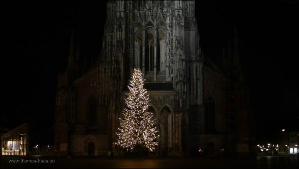 Weihnachtsbaum und Ulmer Münster, Dezember 2014