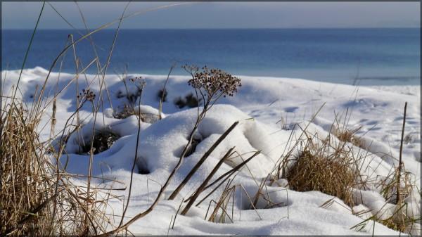 Der verschneite Ostseestrand, Febraur 2015