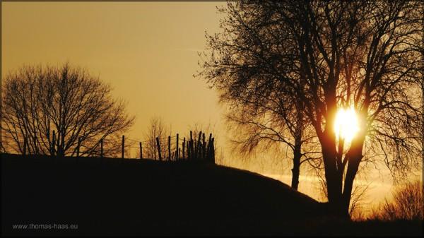 Abendsonne über Kulturlandschaft, Mätz 2015