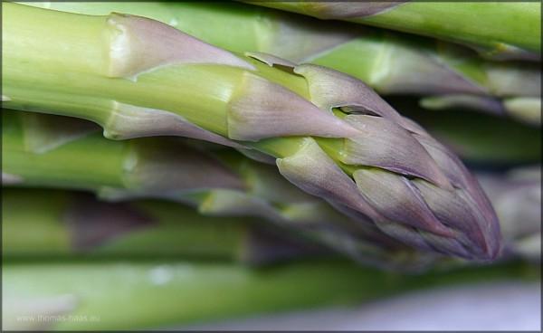 Grüner Spargel mit violetter Spitze, Food-Fpotografie