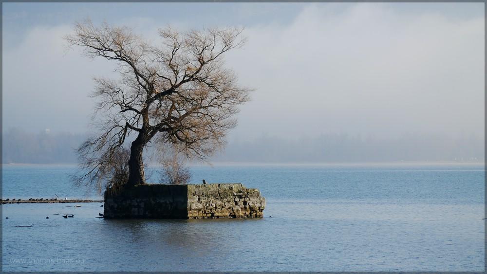 Die kleine künstliche Insel Hoy im Bodensee vor Lindau, Dezember 2015