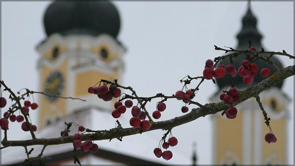 Türme der Klosterkirche, Januar 2016