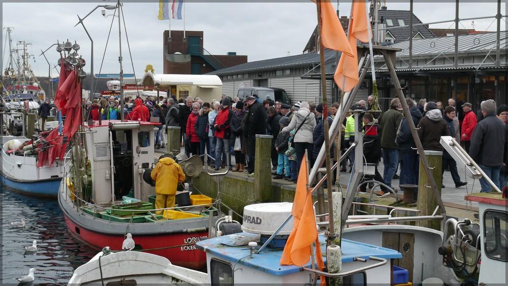 """Kutter im Hafen, der """"Fischmarkt"""" in Eckernförde, Februar 2016"""