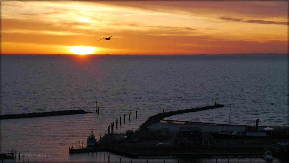 Sonnenaufgang, Schiffe am Horizont, Möwe am Himmel, Damp 2016