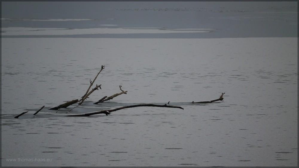 Eiseskälte im Januar 2016, der Weiher ist zugefroren.