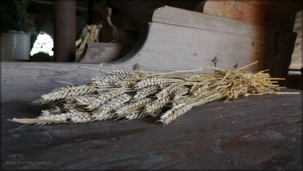 Getreide in der Mühle, Juni 2016
