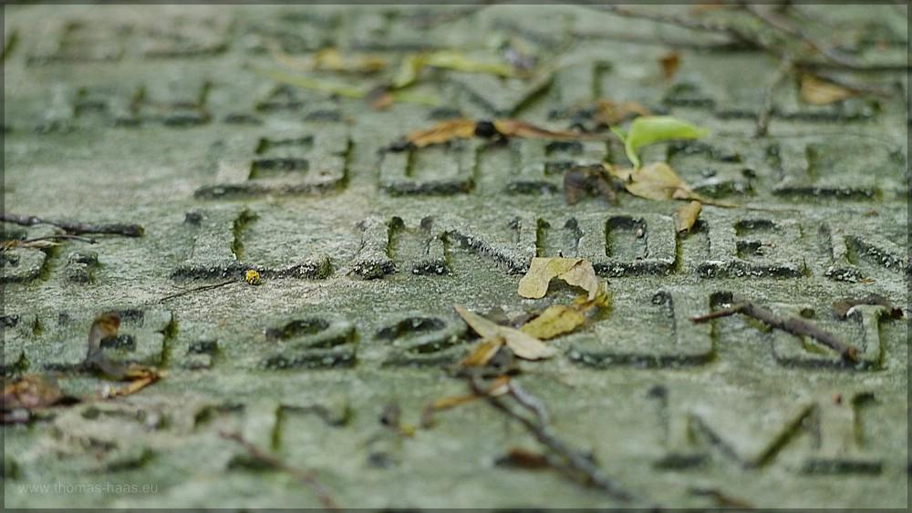 """Grabstein im """"Alten Freidhof"""" in Ulm, Juni 2106"""