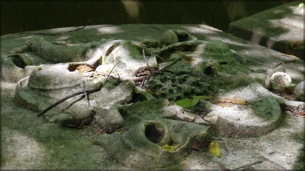 "Grabplatte, ""Alter Friedhof"", Ulm, Juni 2016"