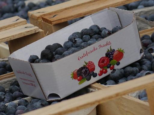 Obststeige mit Heidelbeeren