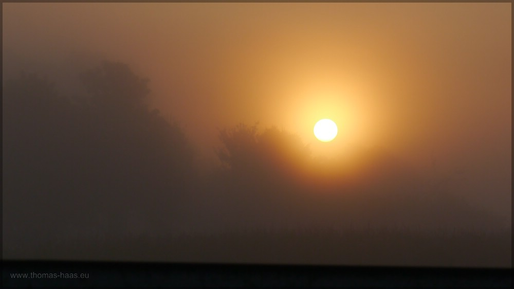 Sonnenaufgang im Nebel über den Feldern, 2016