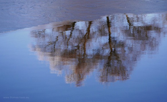 Winter, Spiegelung im See, Janaur 2017