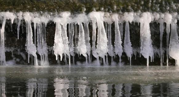 Eis am Mühlbach, Januar 2017