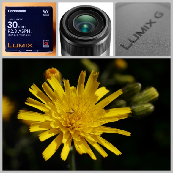 Neuinvestition: Lumix G Macro 30 mm