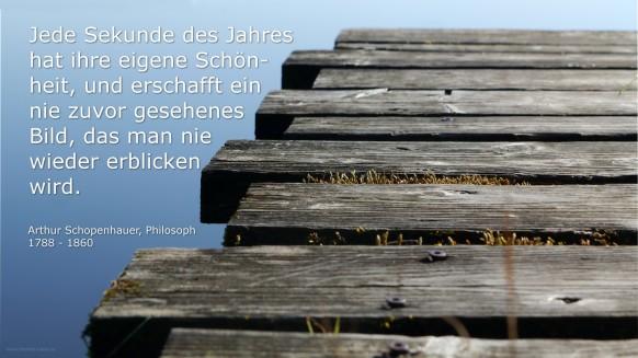 Schopenhauer-Zitat