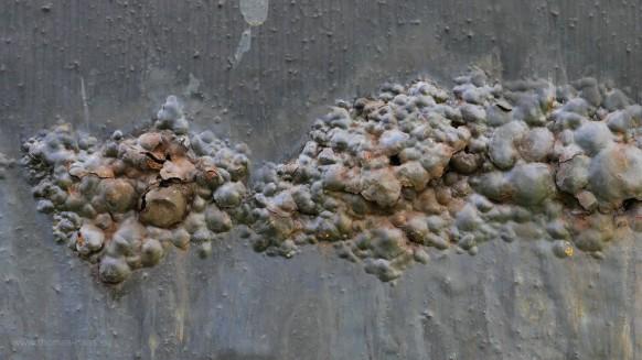 Rostblasen, Zerstörung...