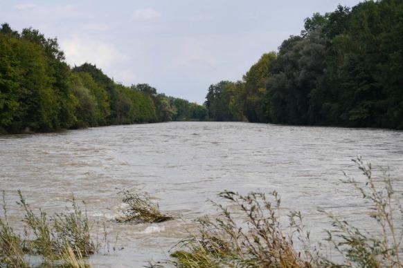 Die Illerspitze bei Hochwasser, September 2017
