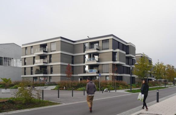 Neubauten in Kressbronn, Bodensee