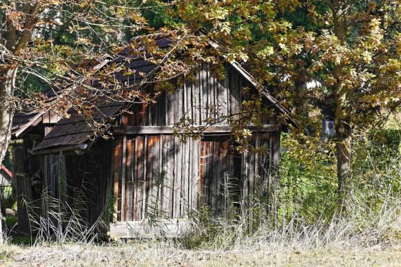 am Wegesrand wartet eine kleine Hütte auf uns Fotografen...