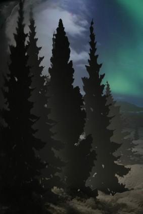 Schaukasten mit Polarlicht...