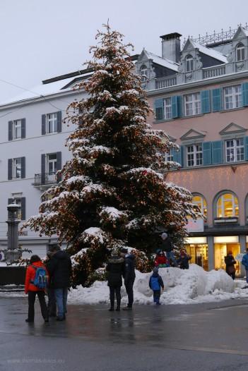 Weihnachtsbaum, 2017, Bregenz