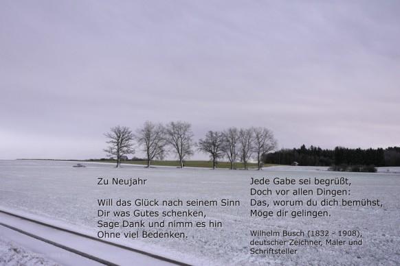 Neujahrs-Zitat, Wilhelm Busch, Dezember 2017