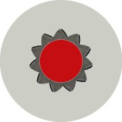 Kreisform 1, Fotografik, Blume