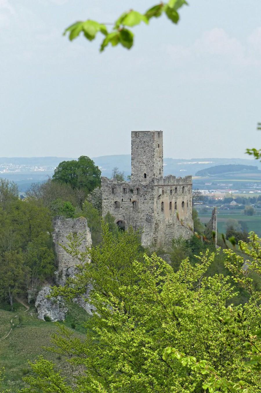 Ruine Niederhaus, vom Hochhausberg fotografiert, April 2018