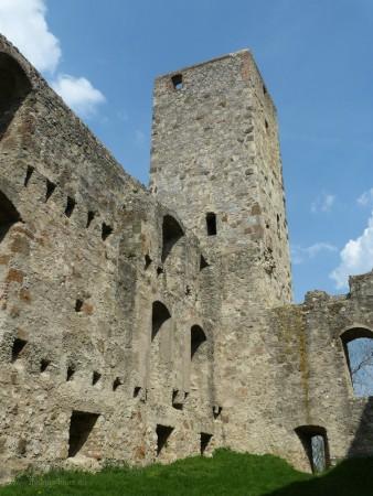 Bergfreid Burg Niederhaus