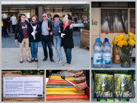 Die Vernissage #WALD am 22.06.2018 in Ulm