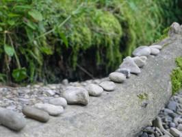 Steinreihe auf Baumstamm