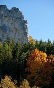Fotostopp: Oberes Donautal, Thiergarten, Yannick Musch