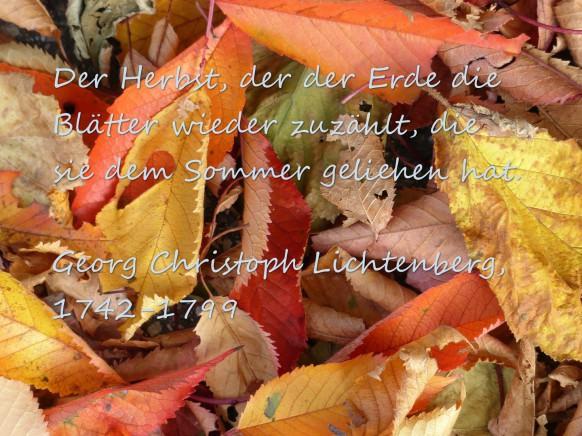 Herbstzitat, Lichtenberg