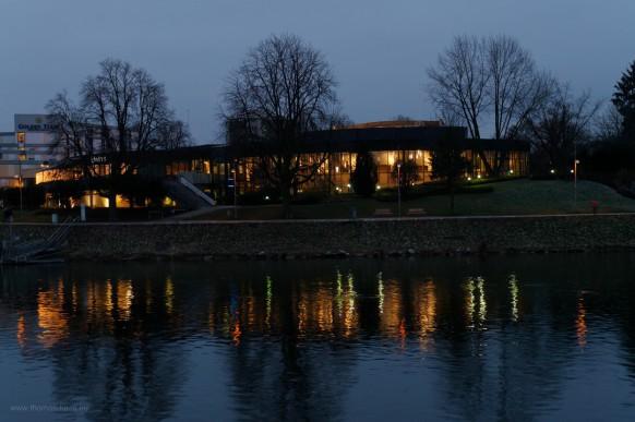 Spiegelunge in der Donau, ESH Neu-Ulm