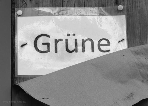Grün/Graue-Realität, Wahlkampf 2018